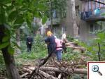 Упавшеее дерево на Филатова